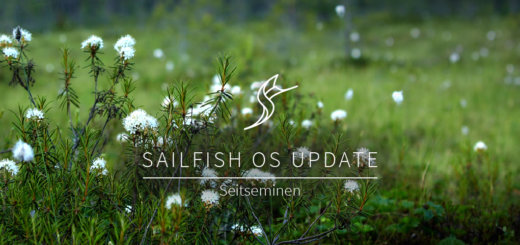 Sailfish OS Seitseminen
